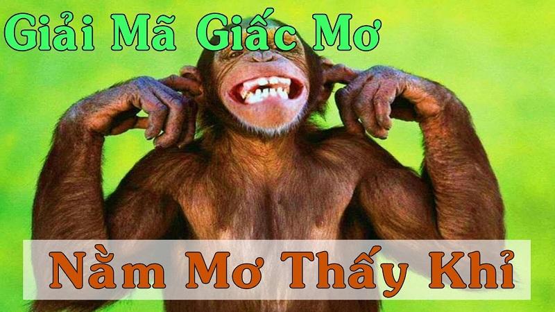 Nằm mơ thấy khỉ nên đánh lô đề con gì? Khỉ là số mấy?